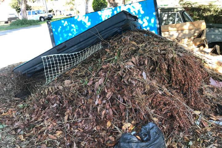 Woodcroft Skip hire for mixed waste load of green waste and other rubbish.