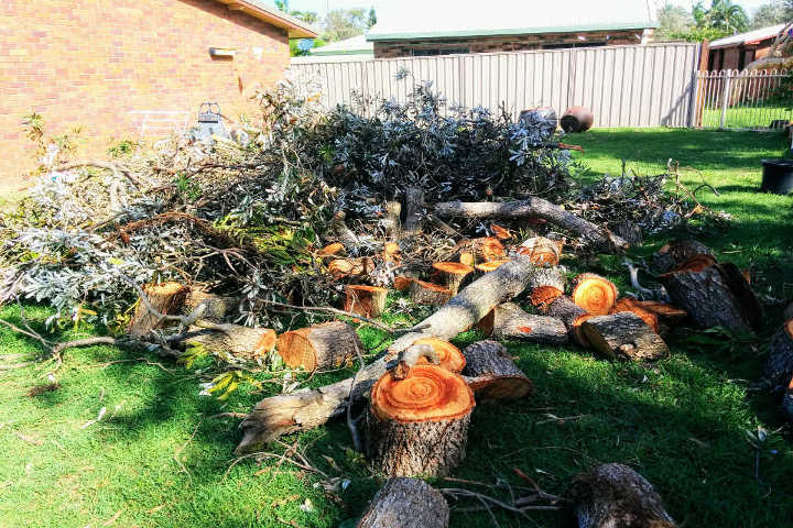 Lalor Park Skip Bin Hire ready to takeaway storm damaged trees