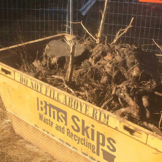 Tree Roots are not timber!!! And do not belong in a timber skip bin.